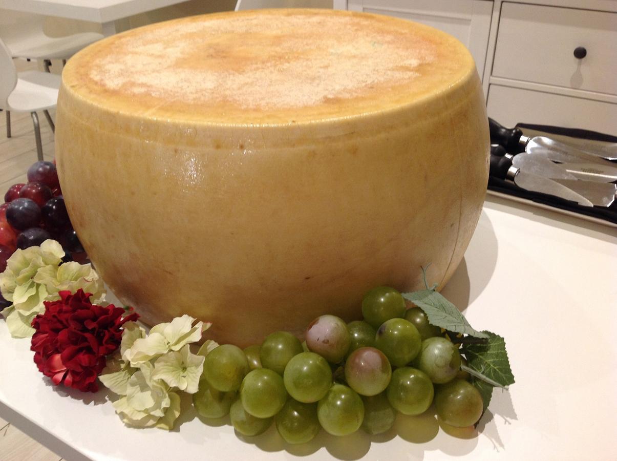 La Majada Quesos es el primer cheese bar en Valencia donde degustar, descubrir y comprar los mejores quesos europeos y españoles de pequeños productores artesanos.