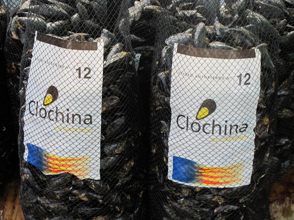 El Mercado del Cabanyal festeja sus 60 años repartiendo 4.000 raciones de clóchina