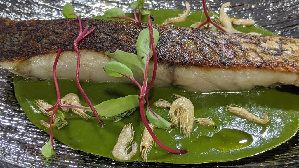 Menús Mediterránea Gastronóma